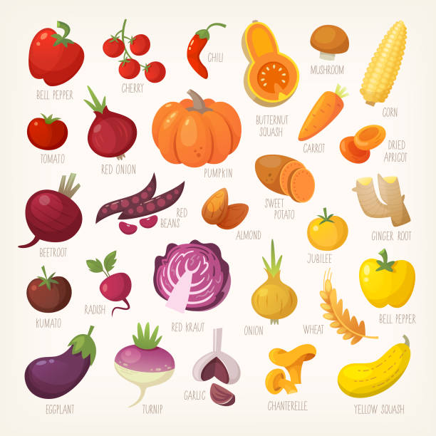 Colorful fruit and vegetables vector art illustration