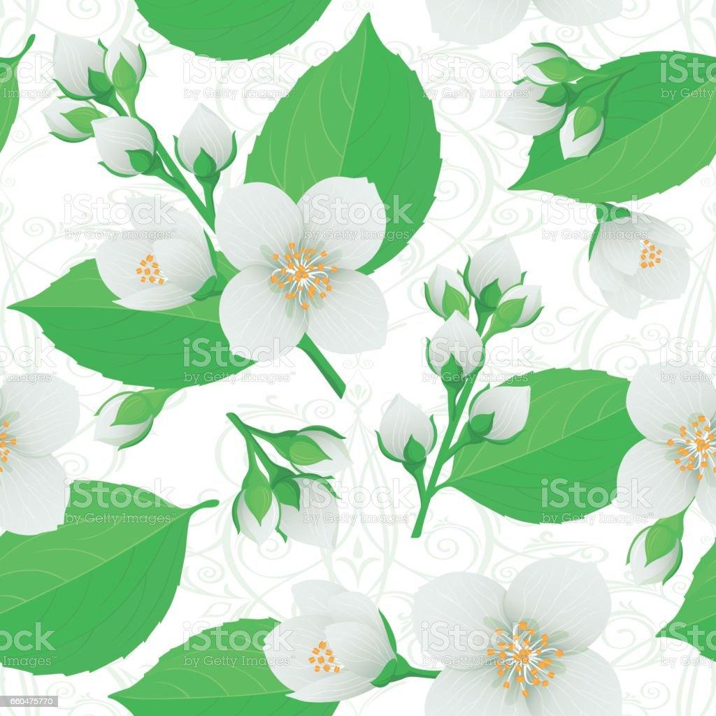 Bunte Sanfte Nahtloses Muster Tapete Blumen Knospen Blätter Jasmin