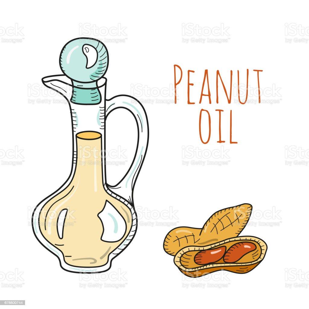 Colorful hand drawn peanut oil bottle vector art illustration