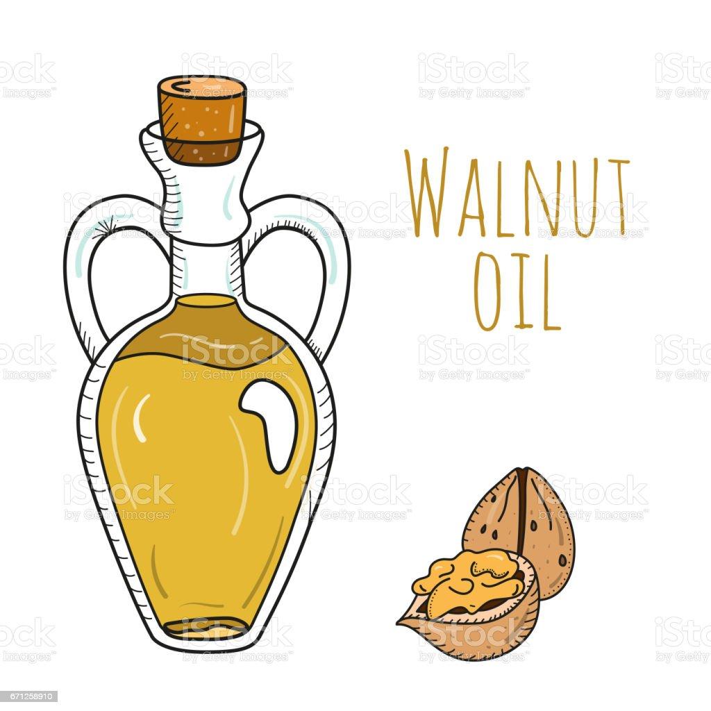 Colorful hand drawn walnut oil bottle vector art illustration