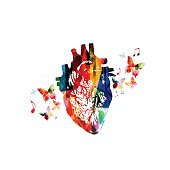 Colorful human heart design