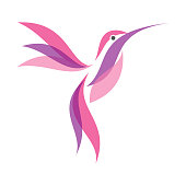 Colorful Hummingbird icon symbol in flat style on the white background. Hummingbird vector symbol for element design. Vector illustration EPS.8 EPS.10