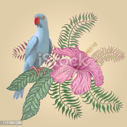 Colorful Illustration of hand drawn tropical hibiscus flower, frangipani, palm leaves and blue Indian parrot isolated on a white background. Wedding invitation, Birthday greeting, book cover, postcard