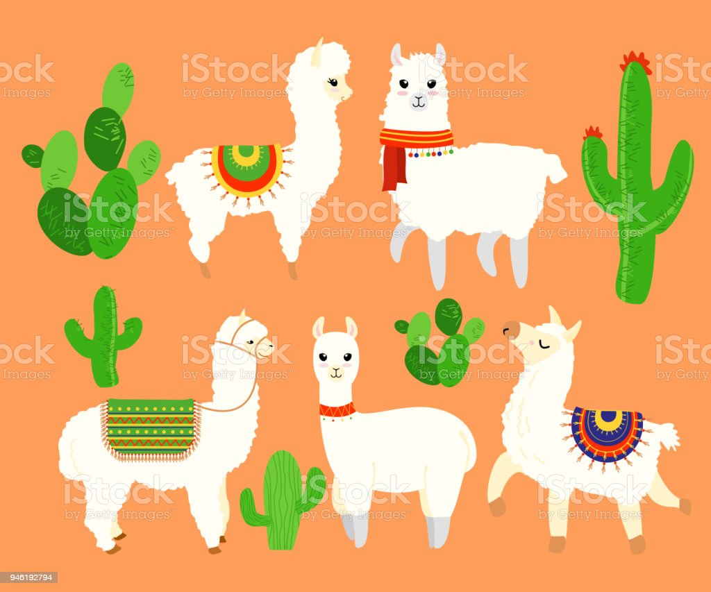 Colorful illustration set of funny and cute lamas and alpaca, cactus elements on orange background in cartoon flat style. vector art illustration