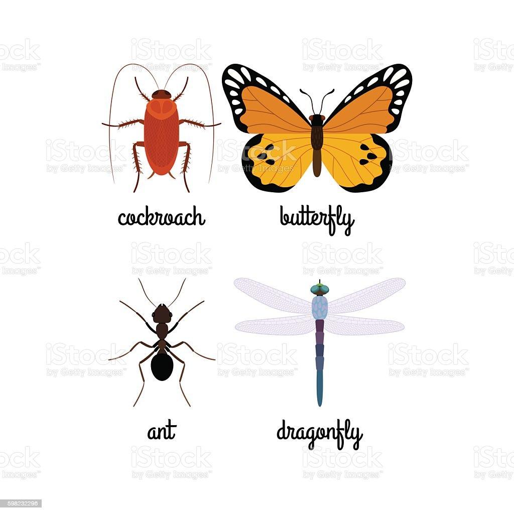 Colorful insects vector set ilustração de colorful insects vector set e mais banco de imagens de abstrato royalty-free