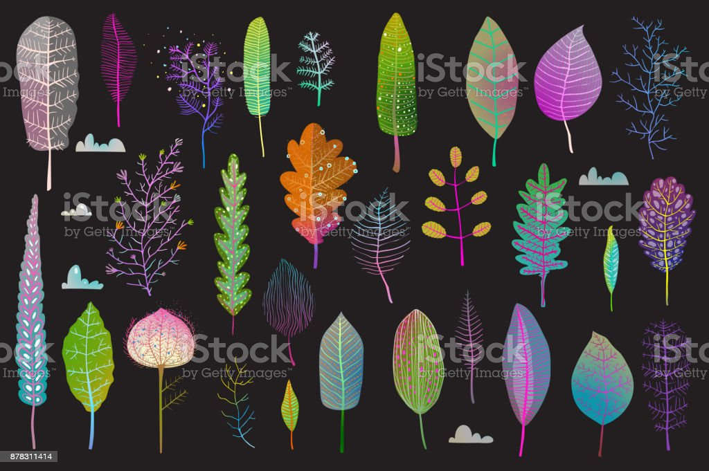 Colorful Leaves Design Collection on Black vector art illustration