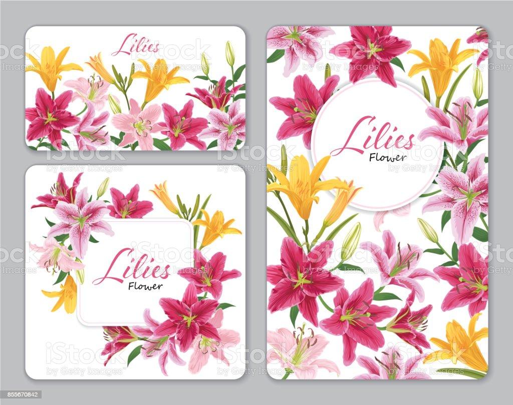 Fleur de Lys colorées sur fond blanc. - Illustration vectorielle