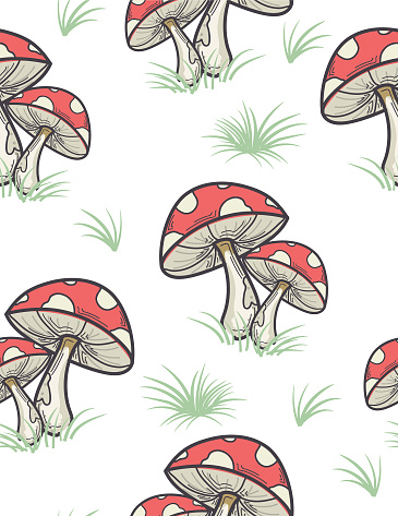 Colorful Mushroom Pattern