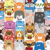 colorful pattern with funny cats and dogs