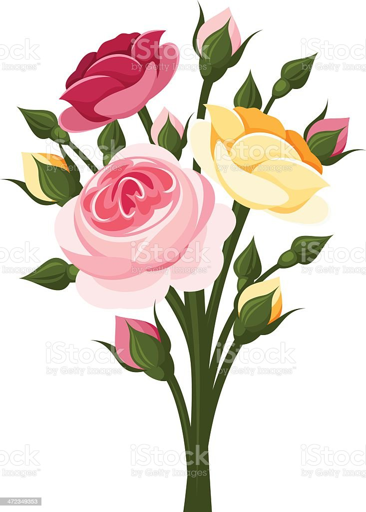 Colorful roses branch. Vector illustration. royalty-free colorful roses branch vector illustration stock vector art & more images of arts culture and entertainment