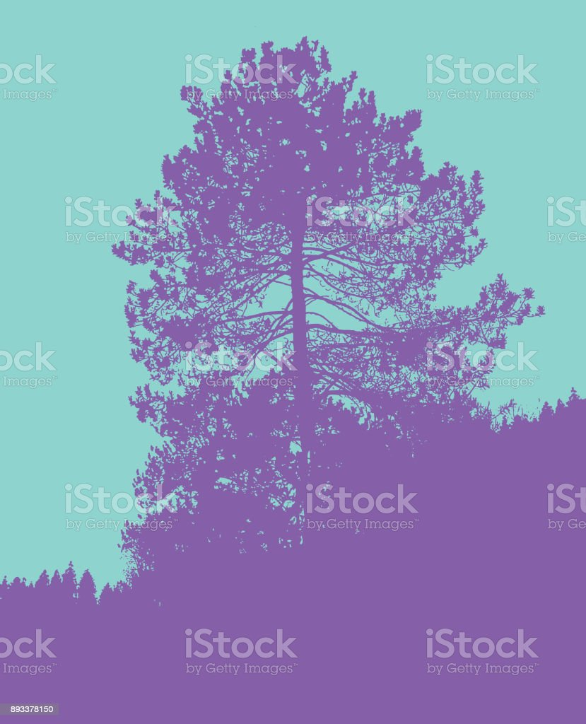 Colorful Silhouette illustration of a Large red pine tree vector art illustration