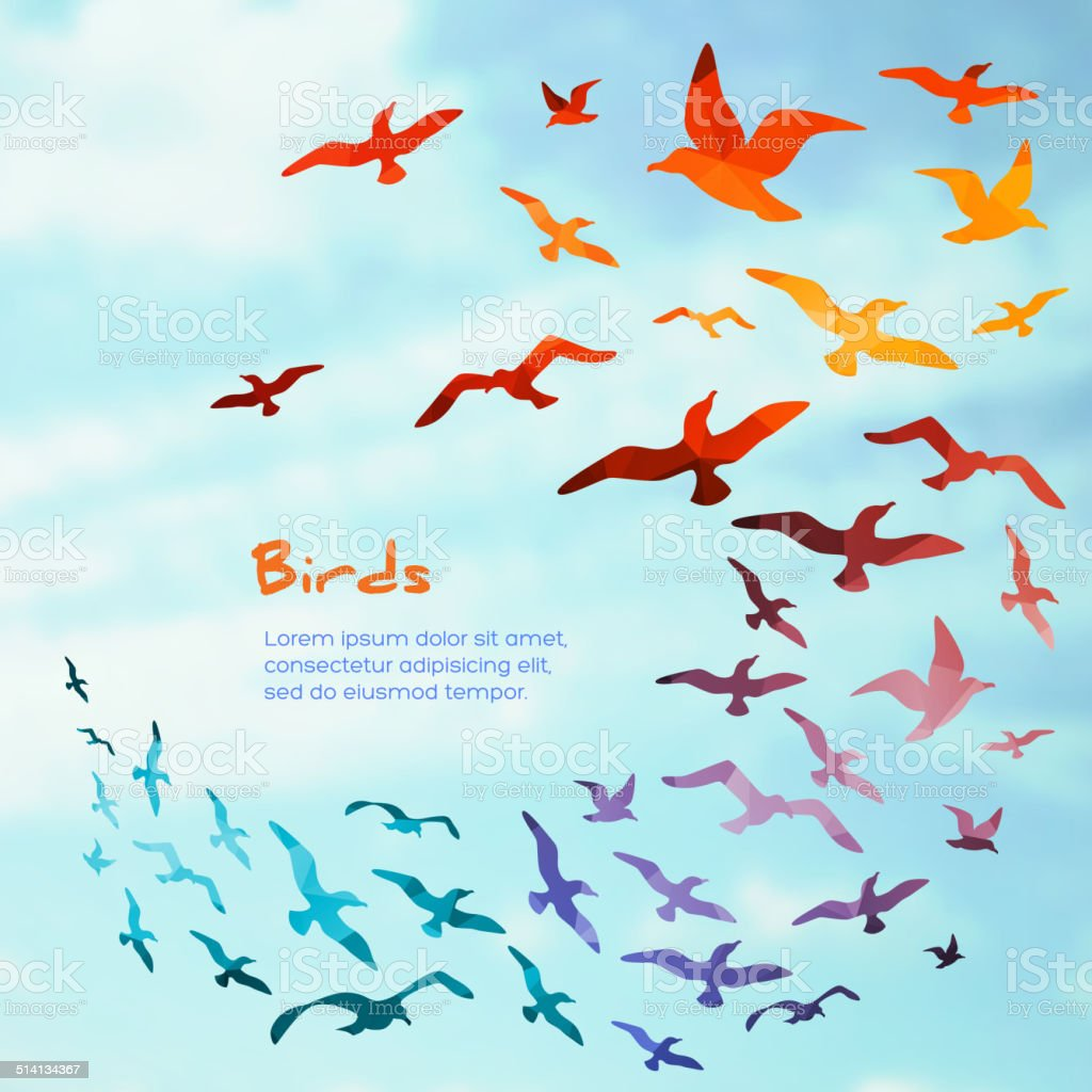 Colorful silhouettes of flying birds. vector art illustration