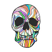 Colorful skull drawing