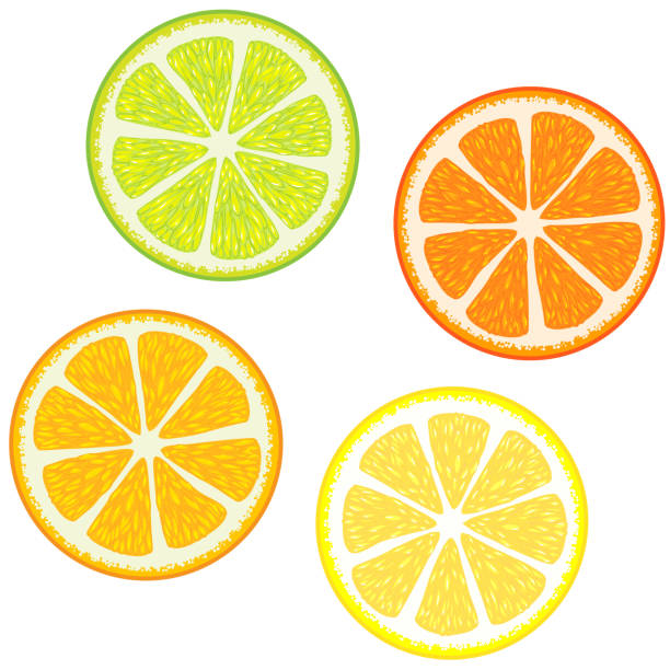 Orange Fruit Vector Royalty Free Le...