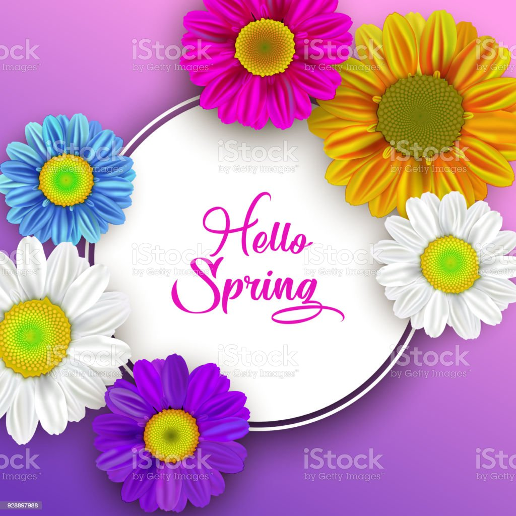 Colorful Spring Background With Beautiful Flowers Vector Stock