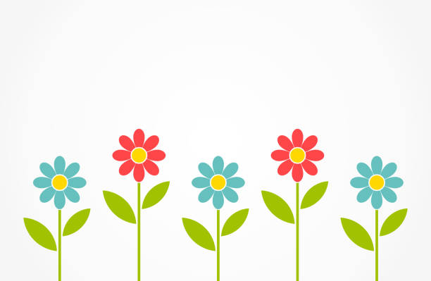 Colorful spring daisy flowers background. Colorful spring daisy flowers background. Vector illustration daisy stock illustrations