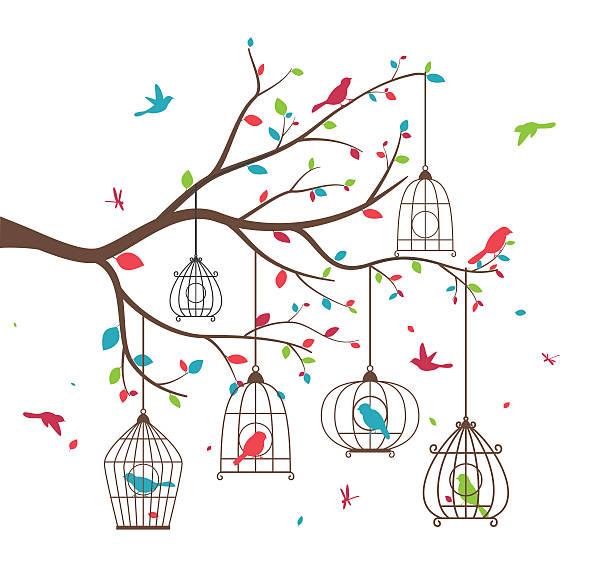 illustrations, cliparts, dessins animés et icônes de colorful tree with birds and birdcages - dessin cage a oiseaux