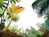 Tropical frame.