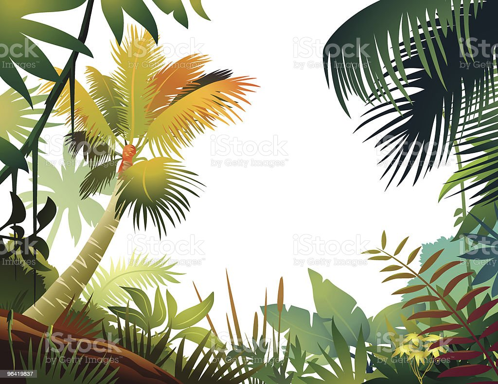 Colorful Tropical Frame vector art illustration