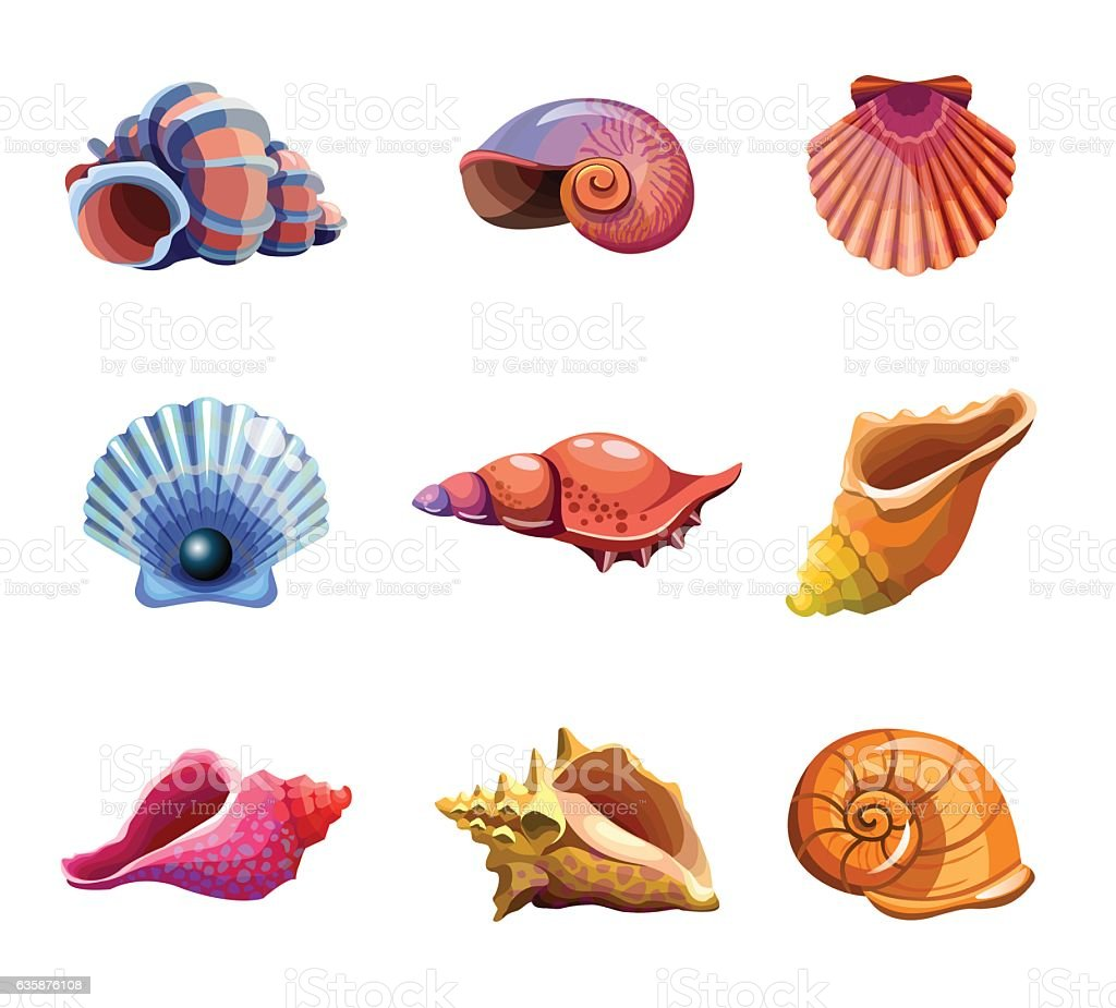Colorful tropical set of sea shells. Underwater icons. Vector illustration vector art illustration