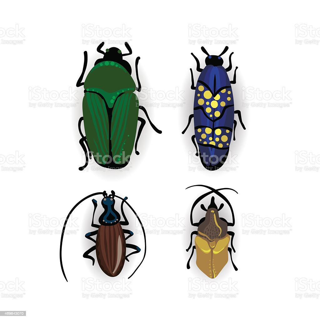 colorful vector drawing of small beetles stock vector art