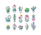 Colorful vector icons' set of indoor plants.