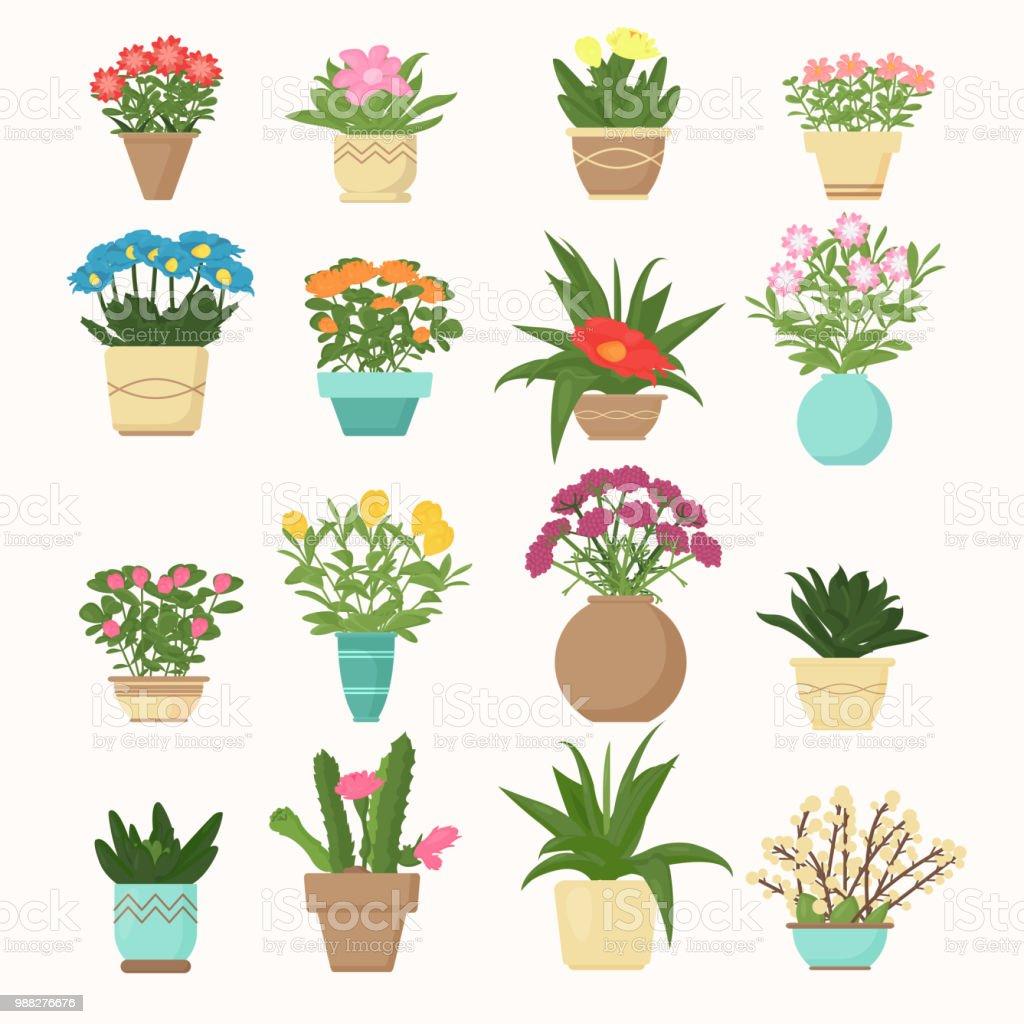 Vetores De Ilustracao Vetorial Colorido Conjunto De Flores E