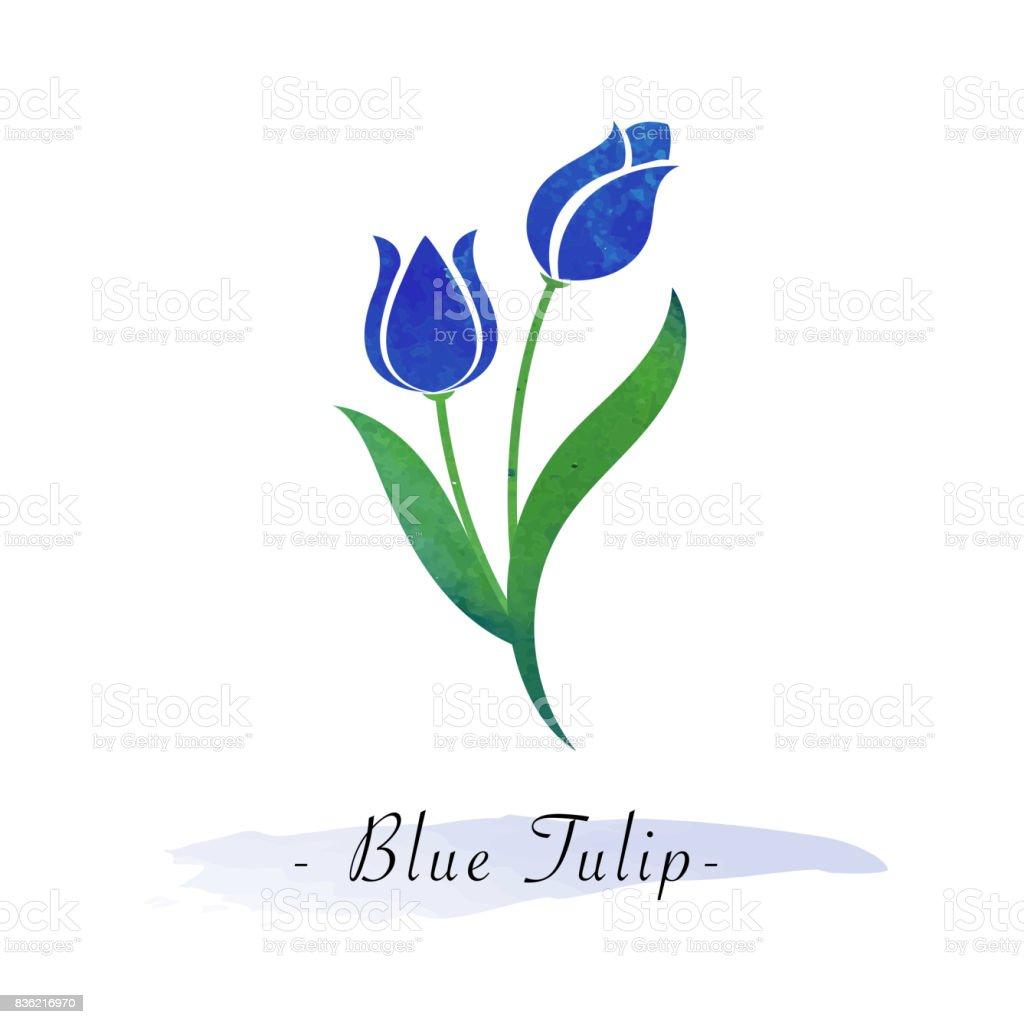 Renkli Sulu Boya Doku Vektör Botanik Bahçe çiçek Mavi Lale Stok