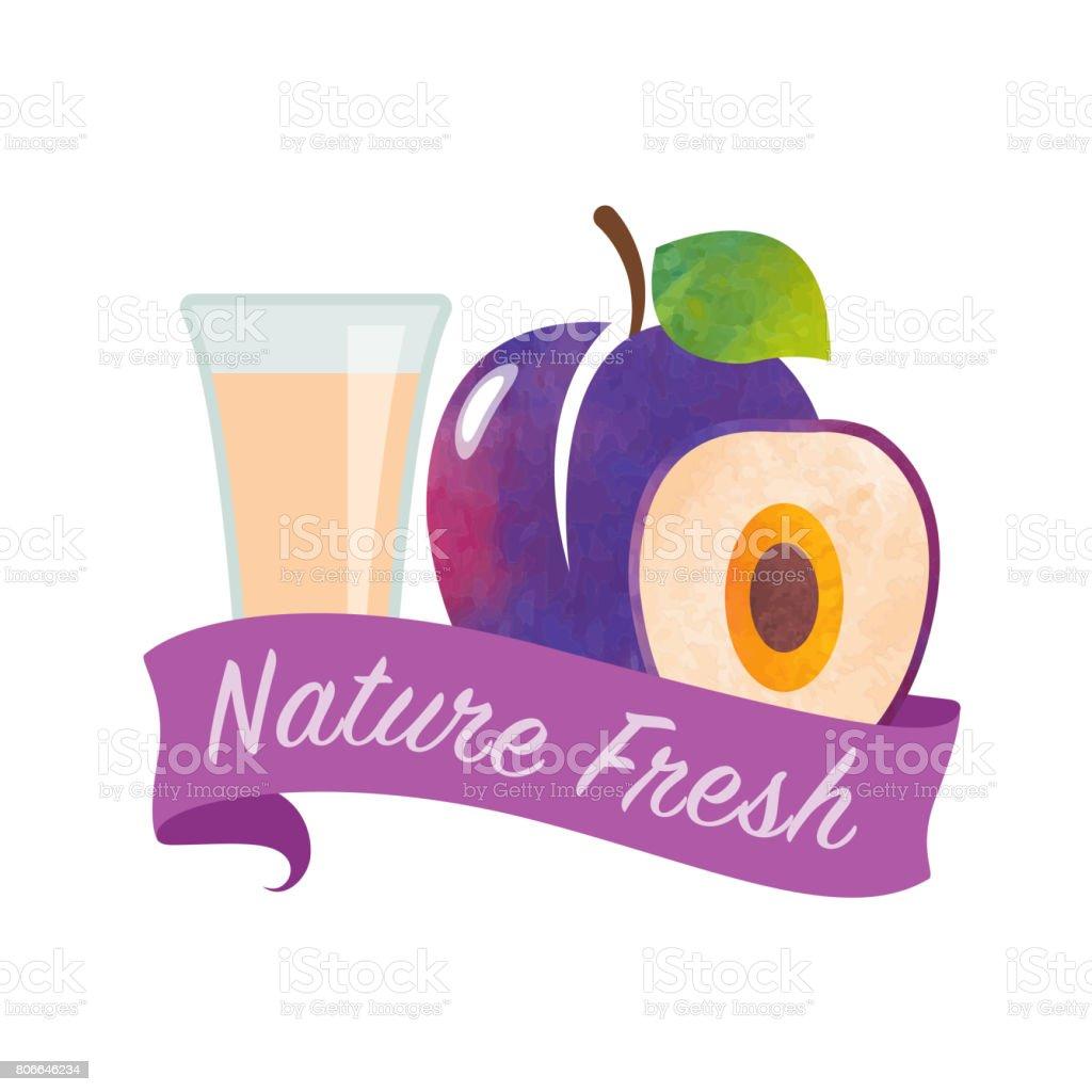 Renkli Sulu Boya Doku Vektör Doğa Organik Taze Meyve Suyu Afiş Erik