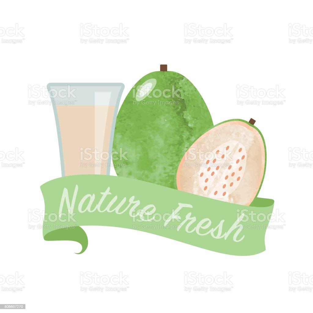 Renkli Sulu Boya Doku Vektör Doğa Organik Taze Meyve Suyu Afiş Beyaz