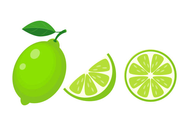 Colorful whole, half and slice lime with green leaf. Vector Colorful whole, half and slice lime with green leaf. Vector illustration isolated on white background. lime stock illustrations