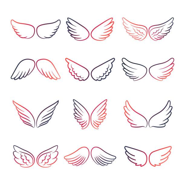 stockillustraties, clipart, cartoons en iconen met kleurrijke vleugels lijn set - engel