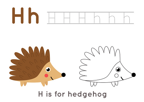 Coloring and tracing page with letter H and cute cartoon hedgehog.