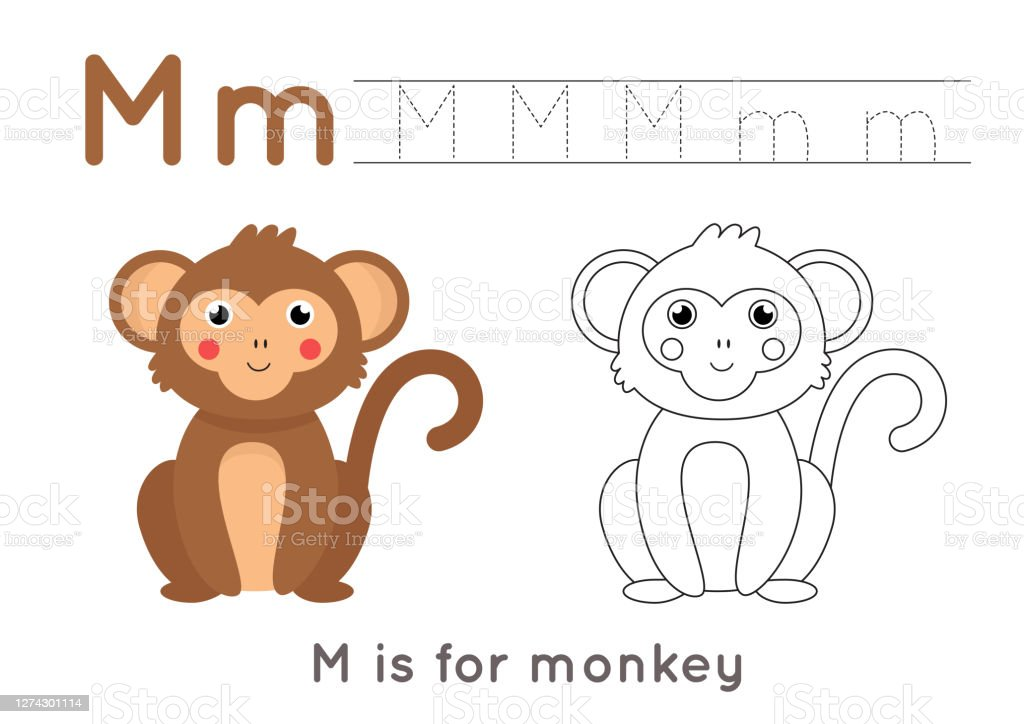 Coloring And Tracing Page With Letter M And Cute Cartoon Monkey Stock  Illustration - Download Image Now - IStock