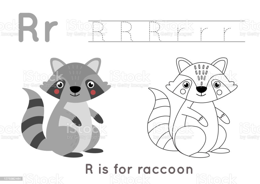 Coloring And Tracing Page With Letter R And Cute Cartoon Raccoon Stock  Illustration - Download Image Now - IStock
