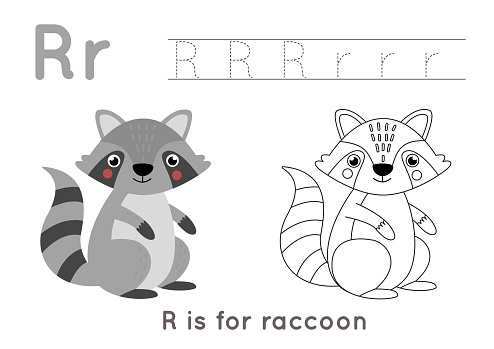 Coloring and tracing page with letter R and cute cartoon raccoon.