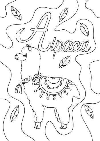coloring book alpaca line art hand drawn artwork vector illustration a4