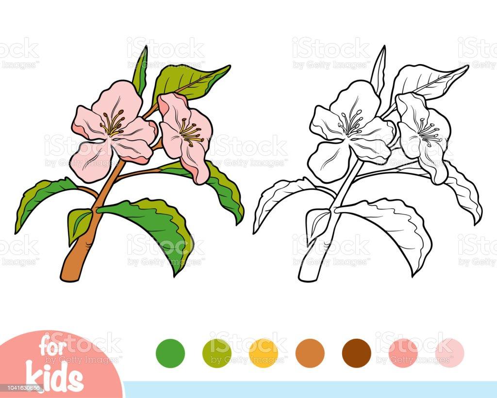 Boyama Kitabı Elma Ağacı Dalı Stok Vektör Sanatı Anaokulunin Daha