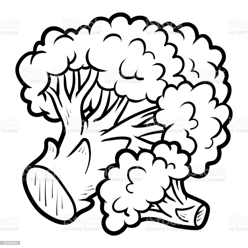 Coloring Book Broccoli Stock Vector Art More Images Of Agriculture