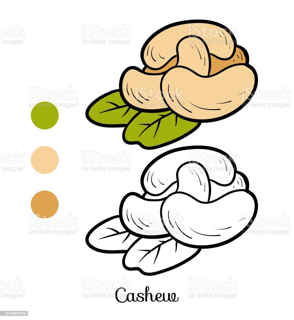 Coloriage Marron Fruit.Livre De Coloriage Noix De Cajou Vecteurs Libres De Droits