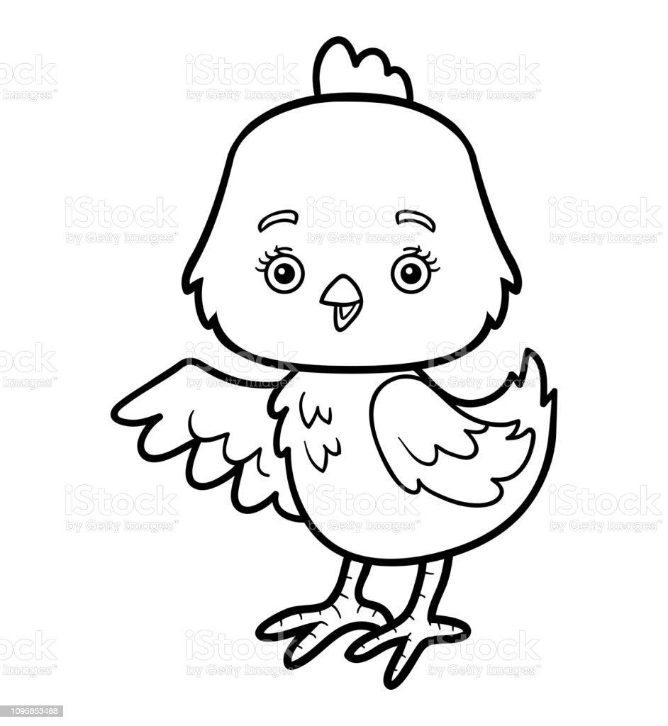 Ilustración De Libro Para Colorear Pollo Y Más Vectores