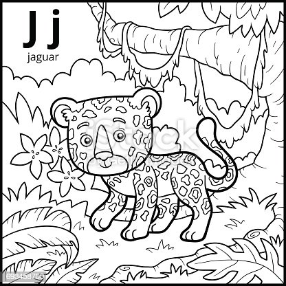 ᐈ Imagen De Libro Para Colorear Alfabeto Descolorido Letra J Jaguar