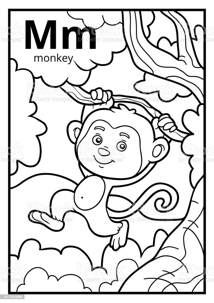 - Coloring Book Colorless Alphabet Letter M Monkey Stock Illustration -  Download Image Now - IStock
