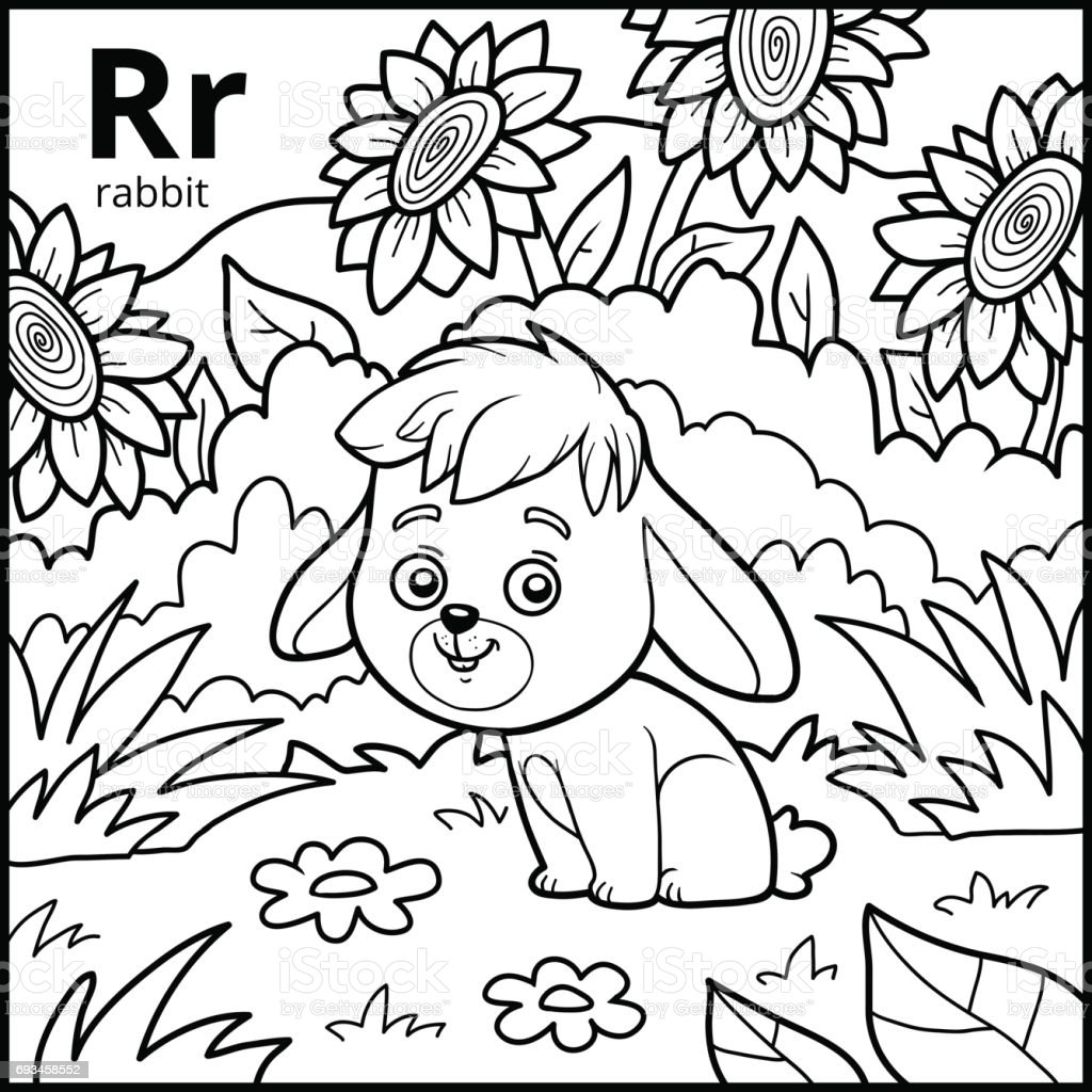 coloring book colorless alphabet letter r rabbit royalty free stock vector art