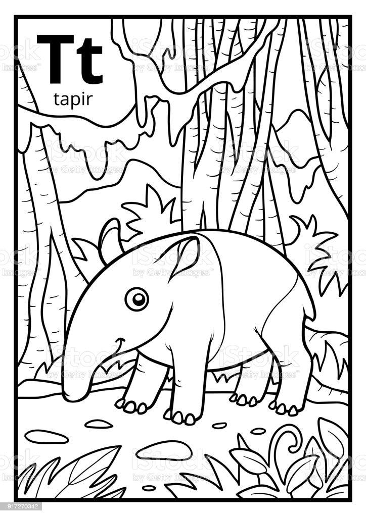 Coloriage Bebe Tapir.Livre De Coloriage Alphabet Incolore Lettre T Tapir Vecteurs Libres