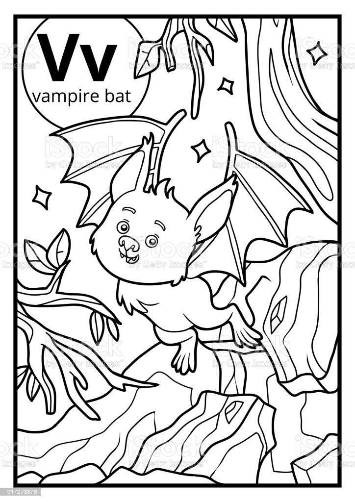 Boyama Kitabı Renksiz Alfabe Harf V Vampir Yarasa Stok Vektör Sanatı