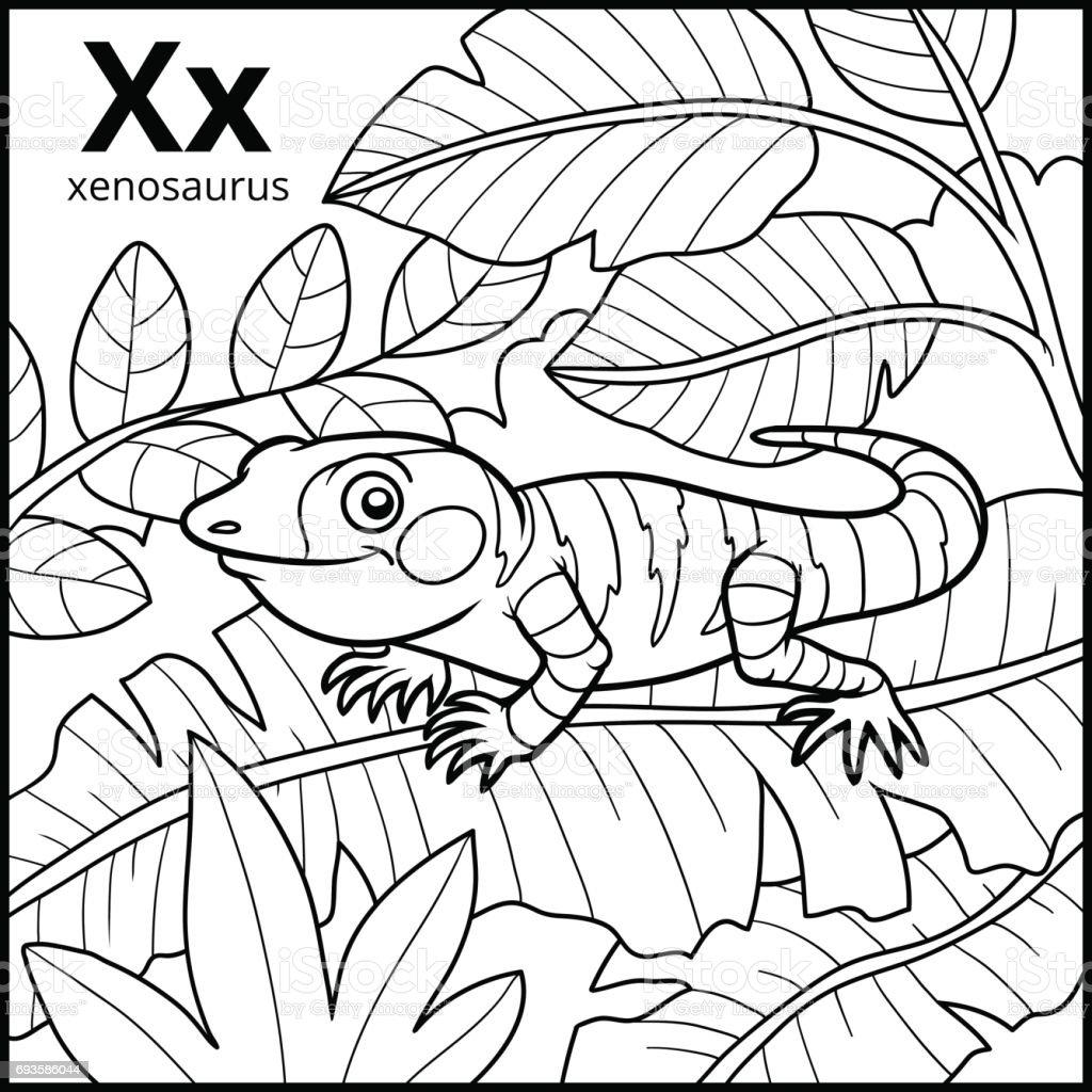 Coloring Book Colorless Alphabet Letter X Xenosaurus Stock ...