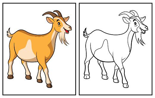 Coloring book cute goat