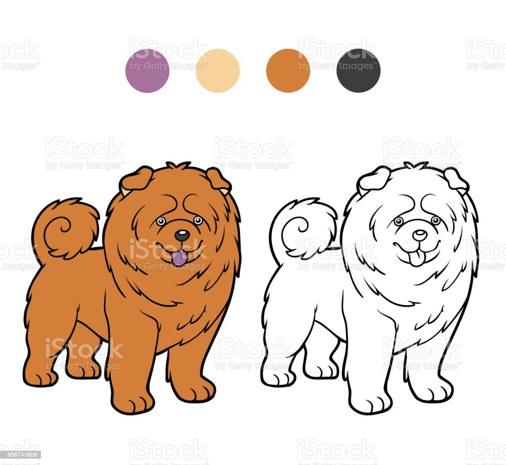 Coloring Book Dog Breeds Chow Chow Stock Illustration Download Image Now Istock