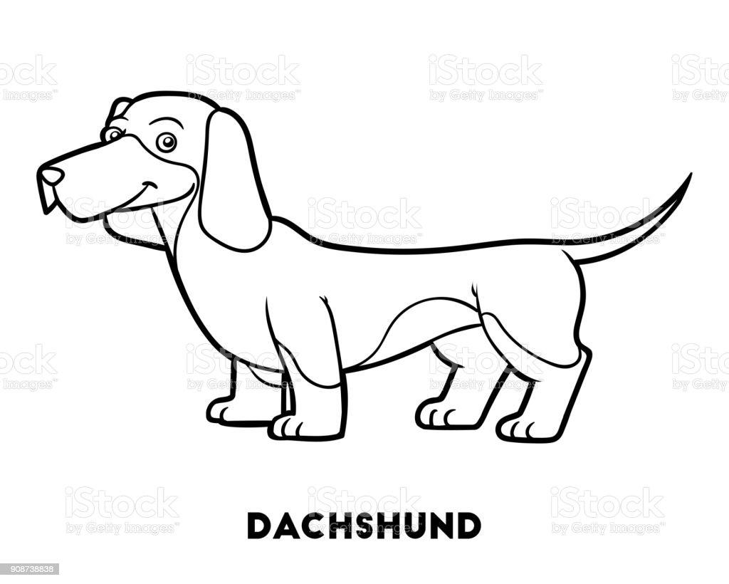 Ilustración De Libro Para Colorear Perro Razas Dachshund Y